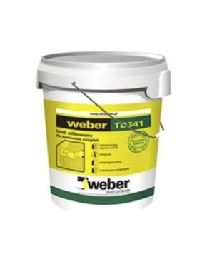 WEBER TD341