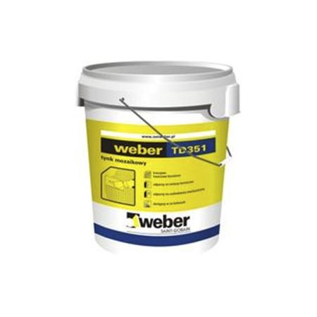 weber td 351